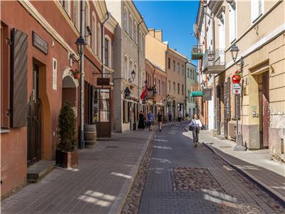立陶宛首都扶持疫情下餐饮业
